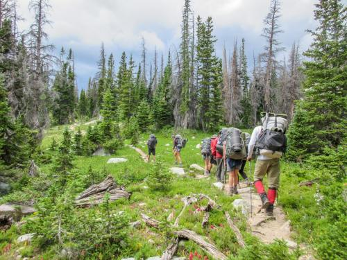Hiking in Medicine Bow National Forest