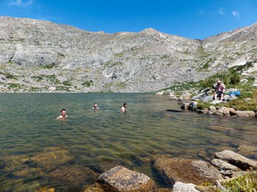 Taking a brisk swim in the mountain lake